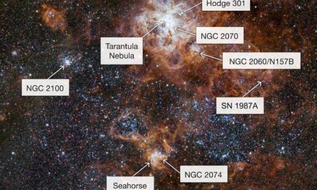 Foto di gruppo per la Nebulosa Tarantola e i suoi vicini