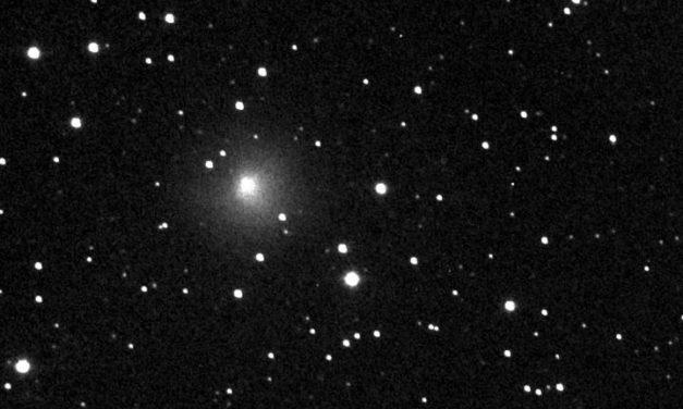29P, cometa 'monocolore'