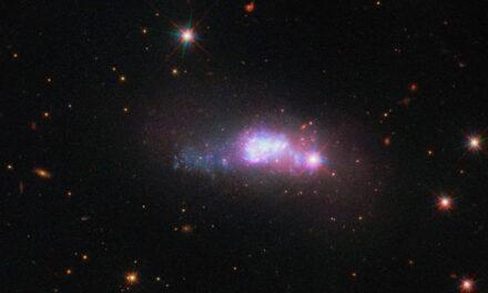 Galassia dal cuore blu per Hubble