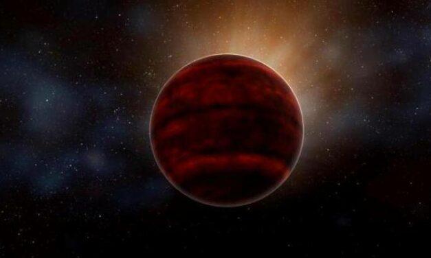 Super brillamenti da Proxima Centauri