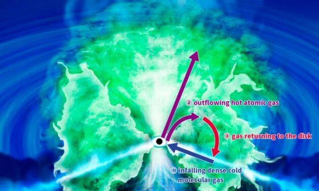 Anelli dinamici per il buco nero del Compasso