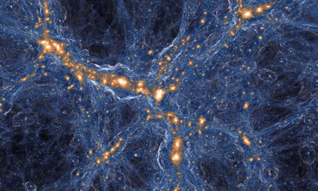Fossile dal Big Bang