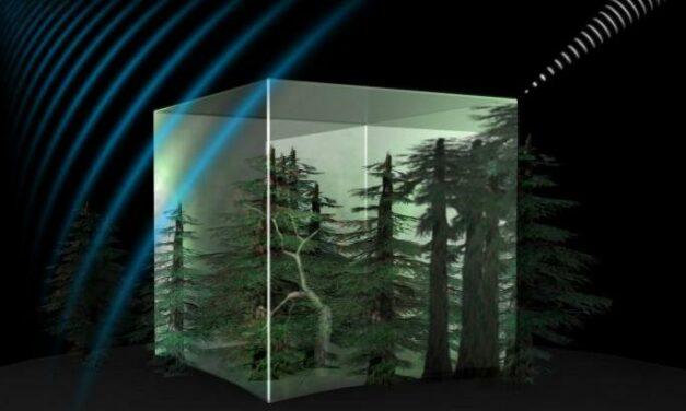 Biomass, siglato l'accordo con Thales