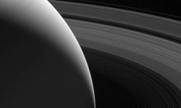 Dalla collezione di Cassini