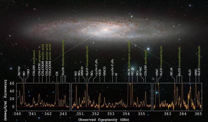 Foresta di molecole per NGC 253