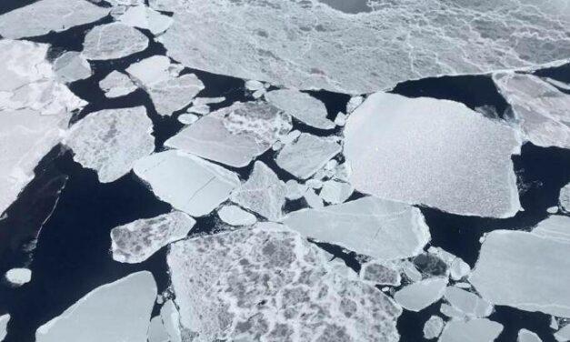 Ghiaccio e neve sotto l'occhio dei satelliti