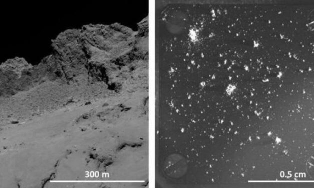 Gli 'ingredienti' di 67P