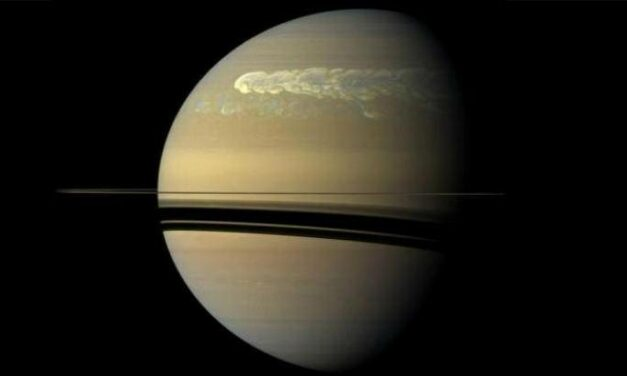 Otto telescopi per Cassini
