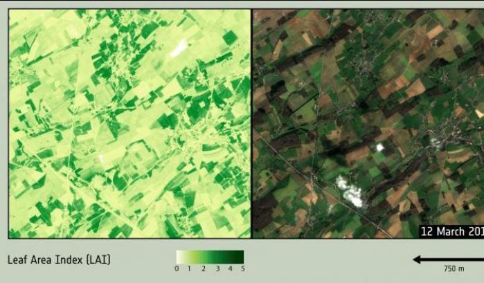 Sentinelle sul campo: vedette dallo Spazio