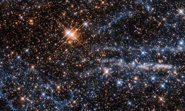 Un Favo e una Tarantola per Hubble