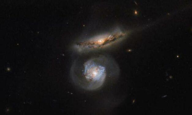 Un megamaser d'acqua per Hubble