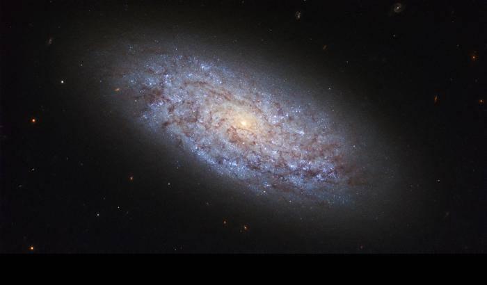 Una galassia nana da studio