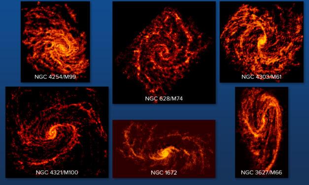 Nursery stellari senza segreti per Alma