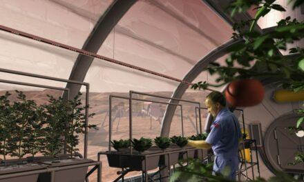 #SpaceTalk: Giardini spaziali