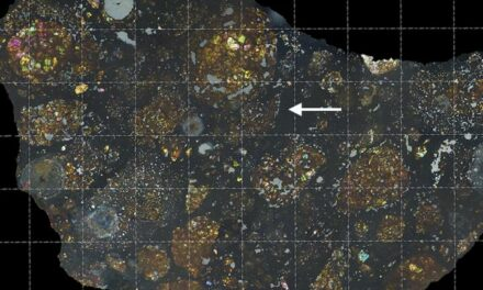 Frammenti di cometa nel cuore di un meteorite