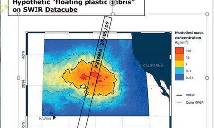 La (poco) visibile isola di plastica