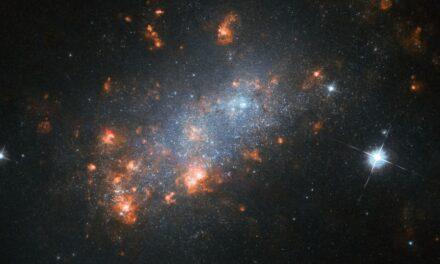 Una 'fioritura' galattica per Hubble
