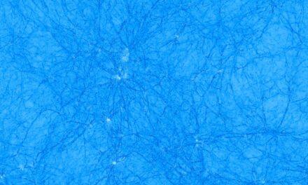 Il cerchio si stringe sulla materia oscura?