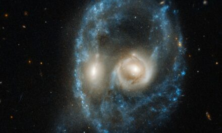 Un 'volto alieno' per Hubble