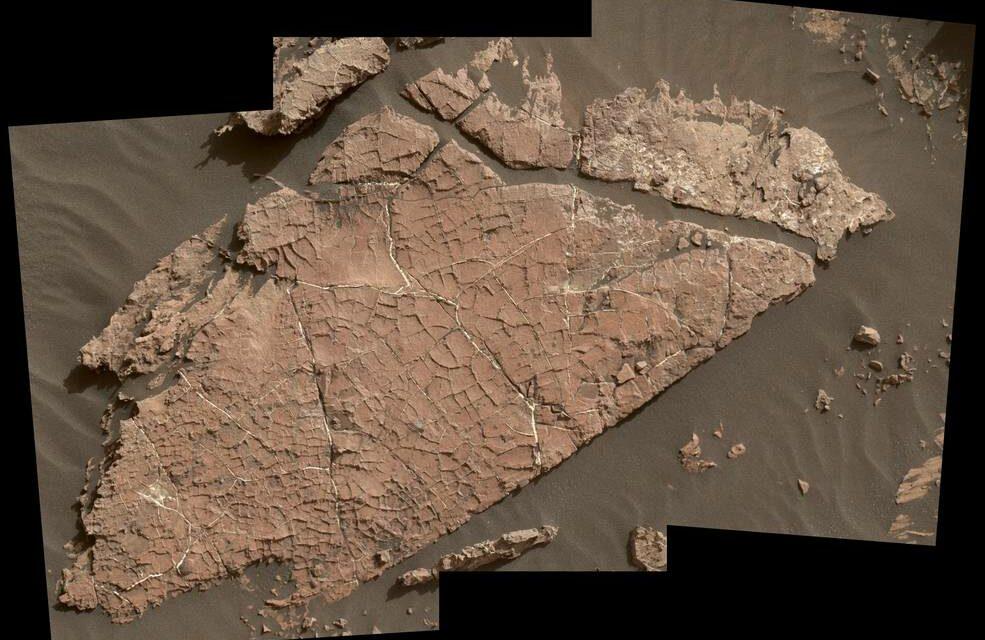 Curiosity osserva un'antica oasi marziana