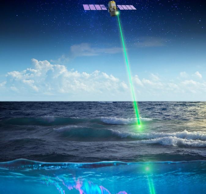 Piccole creature marine vegliate dallo spazio