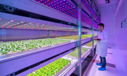 A Portici si inaugura la coltivazione spaziale