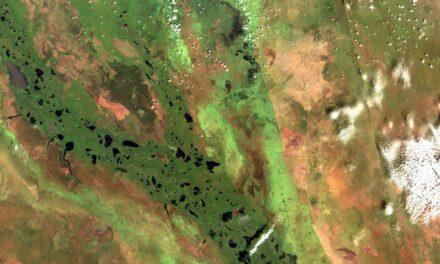 Gas serra, dall'Africa gli aumenti più significativi