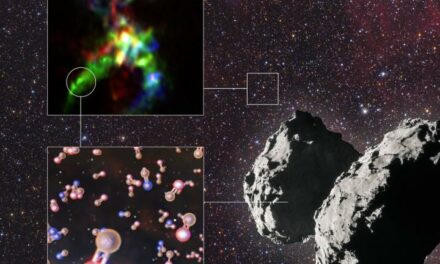 Vita sulla Terra? Il fosforo è il nuovo indiziato