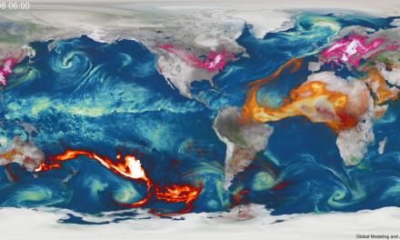 Incendi Australia, ecco la mappa globale dei fumi