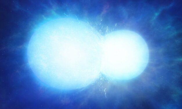 Una nana bianca insolita