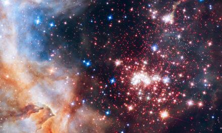 Fra le polveri di Westerlund 2 per scoprire la nascita dei pianeti