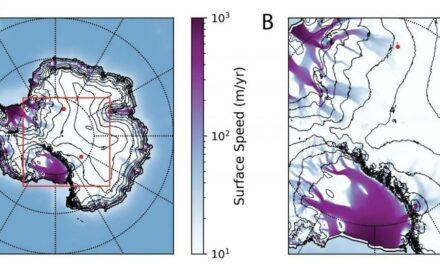Anomalie dei neutrini: scoperta da Nobel?