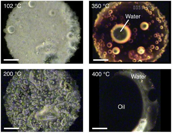La materia organica interstellare è la fonte di acqua sulla Terra?