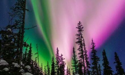 Le luci rosa dell'aurora boreale registrate dai sismometri in Alaska