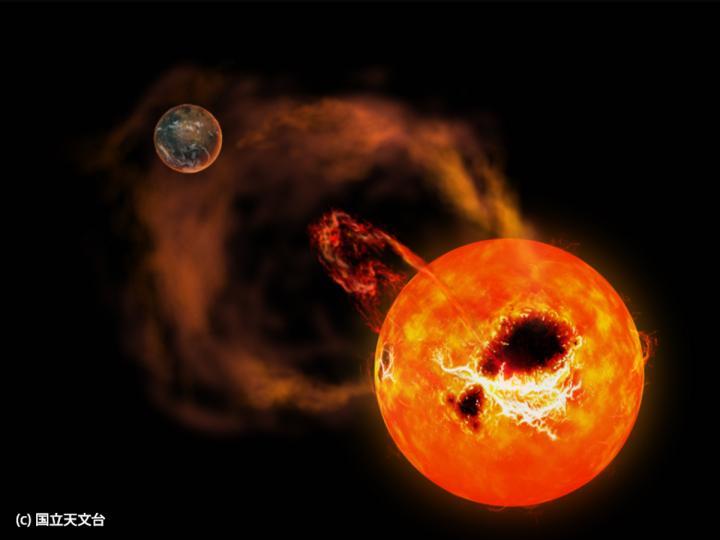 Una vivace nana rossa