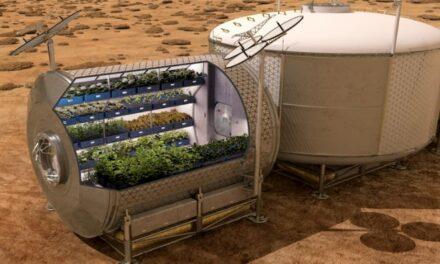 Deep Space replay: coltivazioni spaziali