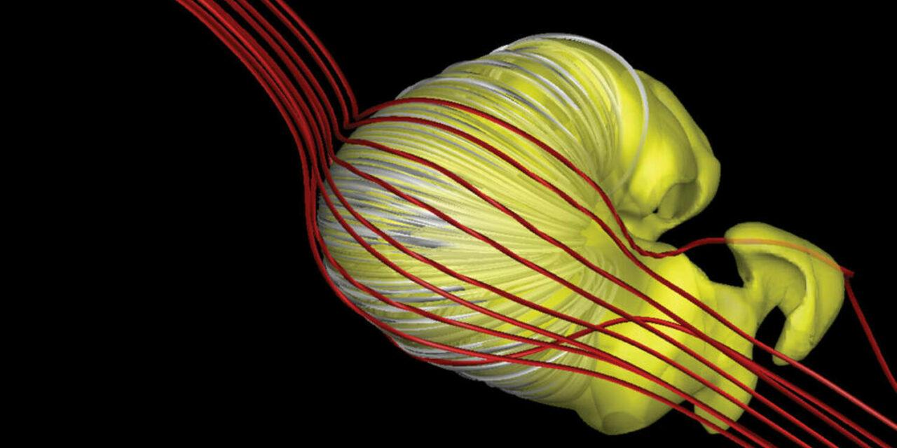 Eliosfera, ecco la forma del nostro scudo celeste