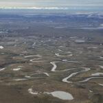 Dna e dati satellitari per preservare l'ecosistema