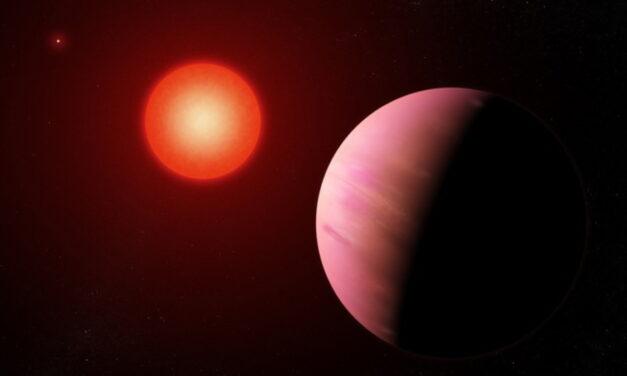 Una 'strana coppia' attorno alla nana rossa TOI-1266