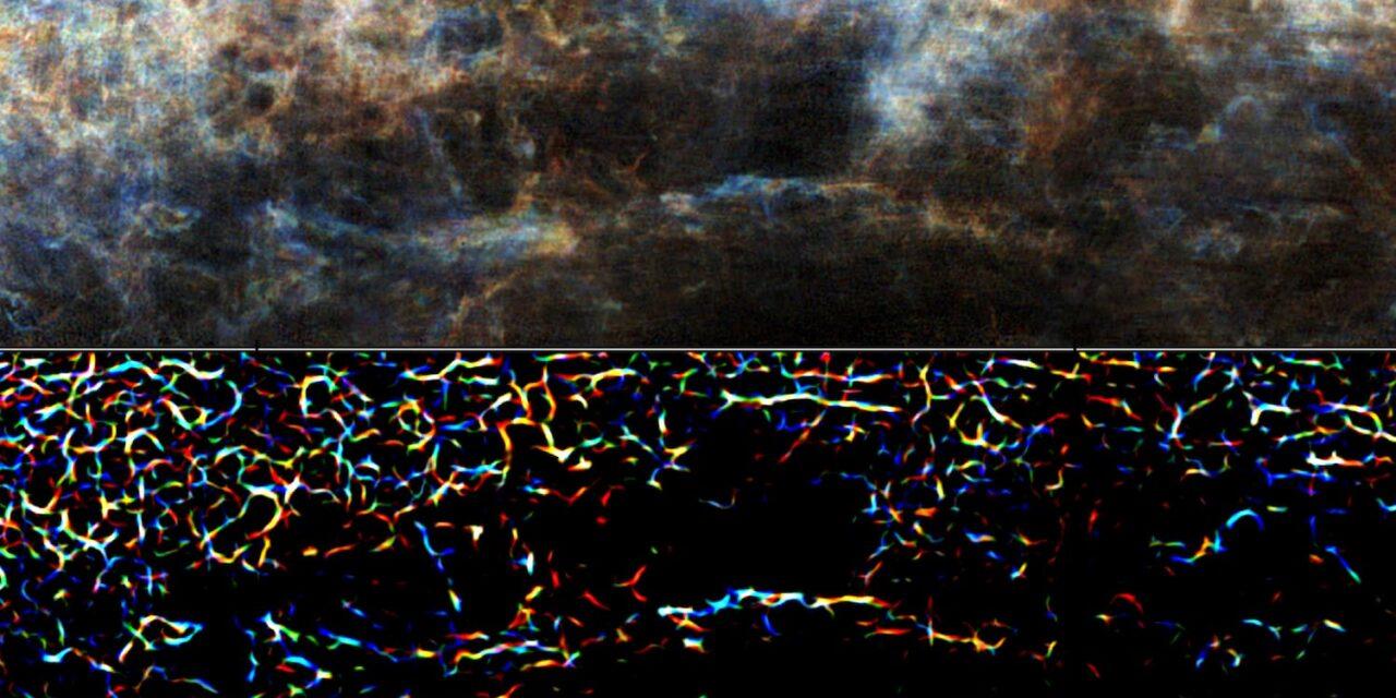 Il 'filo di Arianna' di idrogeno della Via Lattea