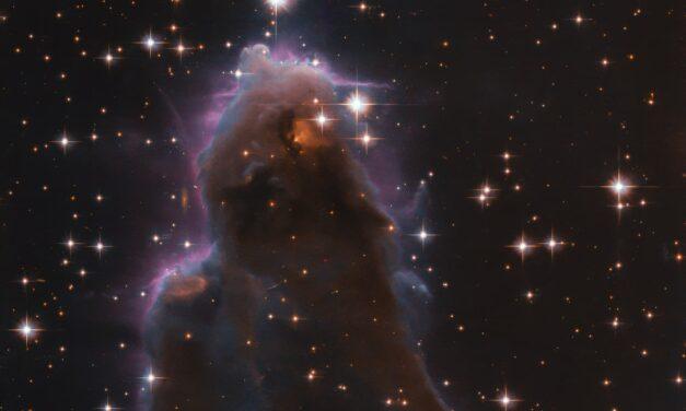 Hubble, una culla stellare coi fiocchi