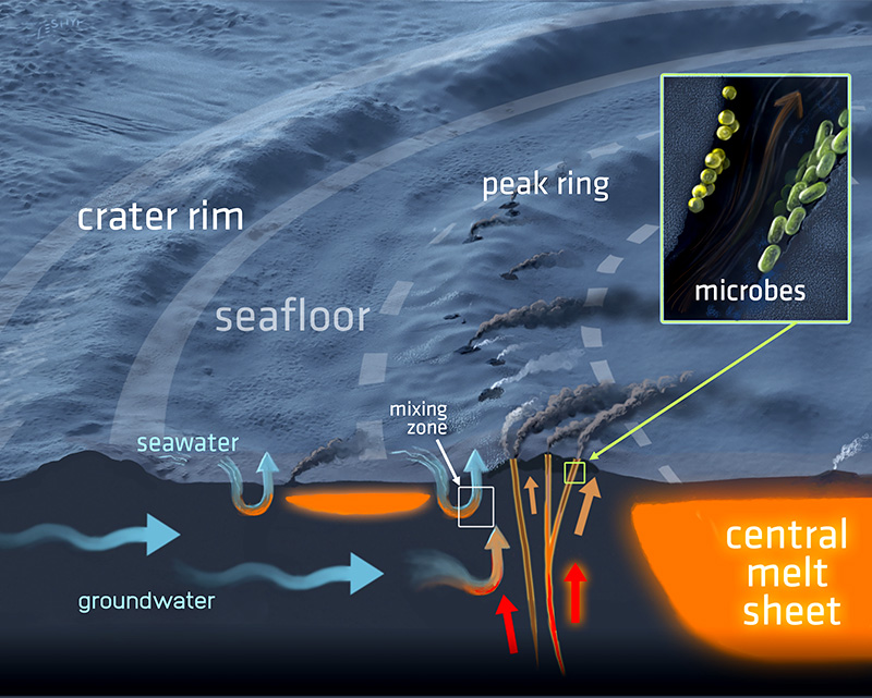 Vita primordiale sulla Terra, la risposta nei crateri