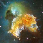 Negli alberi la firma di antiche esplosioni cosmiche
