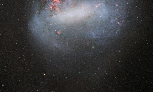 Nubi di Magellano in posa